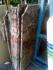 Мраморные слябы (Испания)  IMPERADOR DARK   20мм