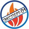 Логотип Эксперт-01
