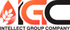 Логотип Intellect Group Company