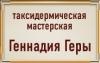 Логотип Таксидермическая мастерская Геннадия Геры