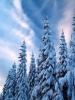 Зимние смеси для работ в зимний период года