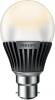 Philips MASTER LEDbulb 8-40W B22 2700K 230V A60
