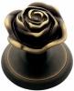 Linea Cali Rose