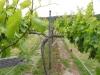 Проволока для подвязки виноградников 2,0мм