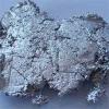 Паста алюминиевая для производства газобетона марки 5-7316/75V