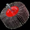 SPRUT Круг шлифовальный лепестковый КЛО 80*25*6mm P80