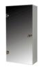 UMT (Украинские Зеркальные Технологии) Шкаф зеркальный  31 ШП 300*600*135 мм