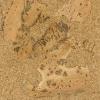 GRANORTE Напольное пробковое покрытие Basic Мрамор