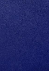 Erismann Shiny-2 3004-8